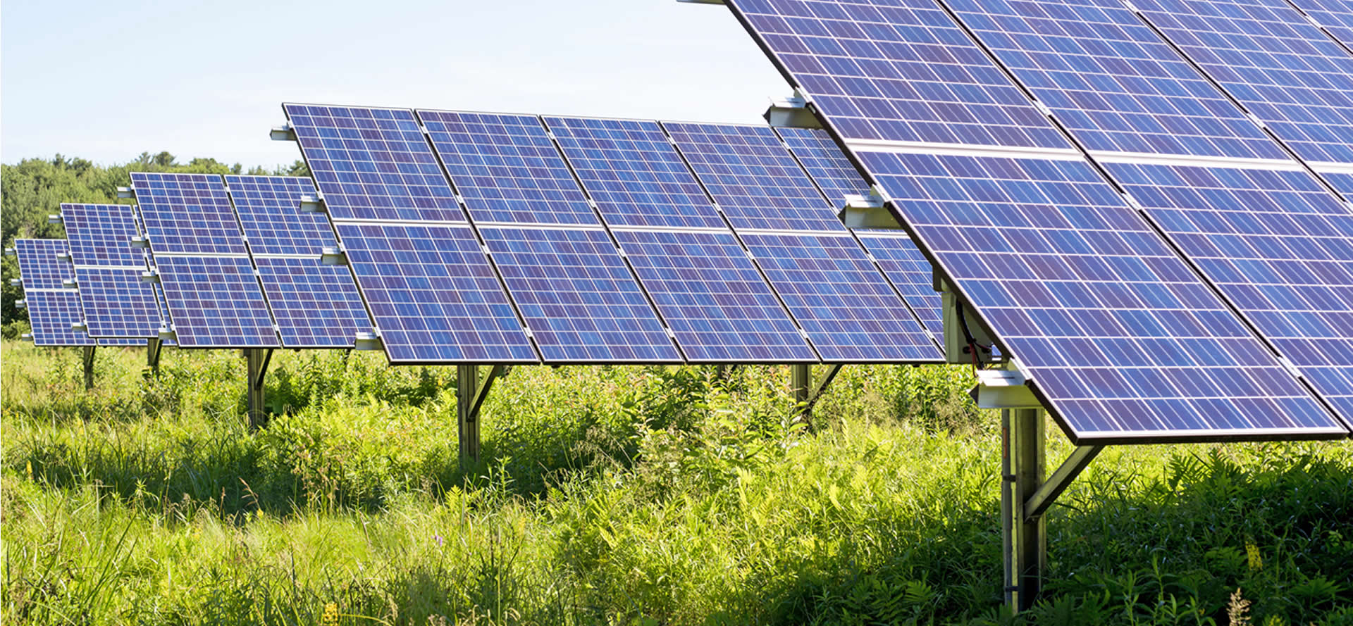fazenda solar betim - Fazenda solar - Tudo que você precisa saber para investir